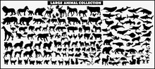 Set Of Vector Silhouettes Of Animals On A White Background