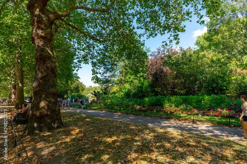 Carta da parati St James Park in London, UK