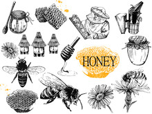 Set Of Hand Drawn Sketch Style Beekeeping Themed Objects Isolated On White Background. Vector Illustration.