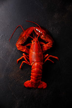 Overhead View Of Lobster