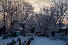 Snowy Backyard In Toronto, Ont...