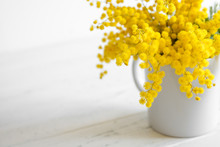 Bouquet Of Mimosa Flowers On White Wooden Background. Springtime.