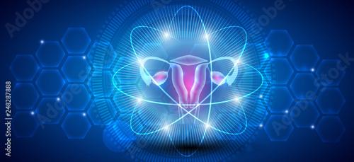 Vászonkép Female uterus abstract scientific background