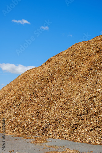 Valokuva  Pile with woodchips at a blue sky