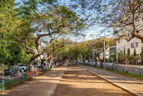 Fototapeta Winterl landscape of boulevard Rothschild, the most prestige and luxury area in Tel Aviv