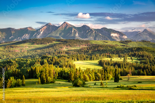 Keuken foto achterwand Honing Belianske mountains in summer at sunset, Poland