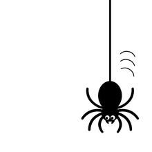 糸からぶら下がるクモ
