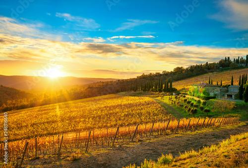 Foto  Radda in Chianti vineyard and panorama at sunset. Tuscany, Italy