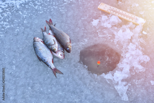 Poster Fish Ice hole fishing. Winter fishing in freezing cold weather concept