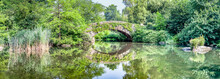 Gapstow Bridge With Greenery In Central Park