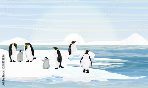 A flock imperial penguins with chicks Wallpaper Mural