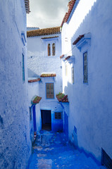 Morocco, Chefchaouen, blue city street, gate pots with flowers