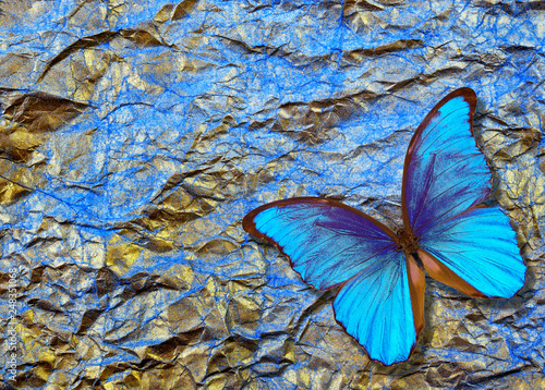 Photo sur Toile Papillons dans Grunge morpho butterfly on bright shining background. gold blue texture background. golden crumpled paper.