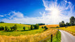 canvas print picture - Landscape in summer with bright sun, meadows and golden cornfield in the background