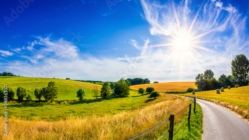 Poster de jardin Arbre Landscape in summer with bright sun, meadows and golden cornfield in the background