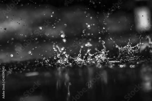 Water drops in the dark outside. Black and white. - 248390043