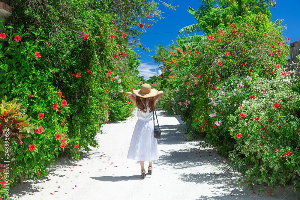 Fototapety, obrazy: 沖縄の風景(竹富島)