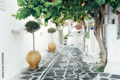 Fototapeta Mykonos street obraz