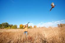 A Female Pheasant Hunter