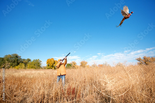 Fotografie, Obraz A Female Pheasant Hunter