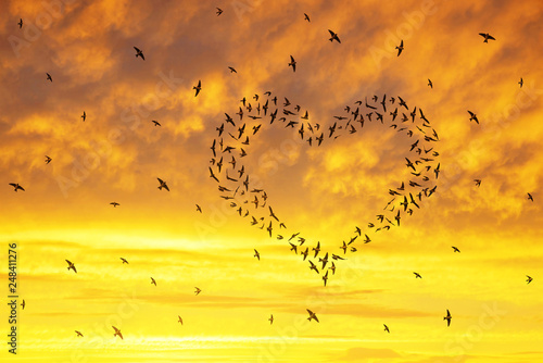 Fényképezés Silhouette of a flock of birds flying in the heart formation at sunset sky