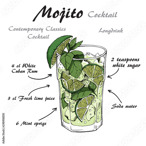 Valokuva Vector illustration of alcoholic cocktail Mojito sketch