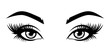 Illustration of woman's sexy luxurious eye with eyebrows and full lashes. Idea for business visit card, typography vector. Perfect salon look. .