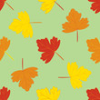 Seamless pattern with autumn leafs.