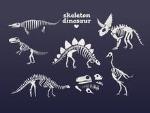 Vector T-rex Dinosaur Fossil Skeleton Icon On Blue