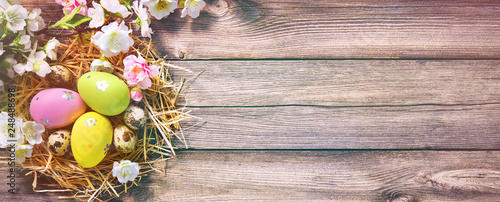 Easter background with Easter eggs in nest Canvas Print