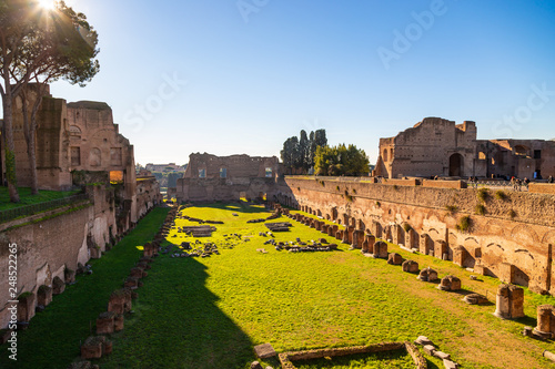 Fotografie, Obraz  Ruins of Stadium Domitanus at the Palatine Hill in Rome, Italy