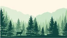 Forest Landscape Background. Vertor
