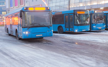 Buses In The Winter At The Bus...