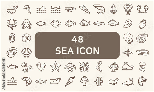 Fototapeta Set of 48 sea life and ocean Vector Icons. Contains such Icons as Nautical Creatures , sea food, sea, ocean, fish, coral, sea horse, seaweed, turtle And Other Elements. obraz