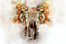 Elephant - Watercolor Illustra...