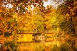 Lake during autumn in Lednice Park, Czech Republic - 248600238