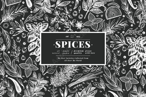Fototapeta Culinary herbs and spices banner template. Vector background for design menu, packaging, recipes, label, farm market products. Hand drawn vintage botanical illustration on chalk board. obraz