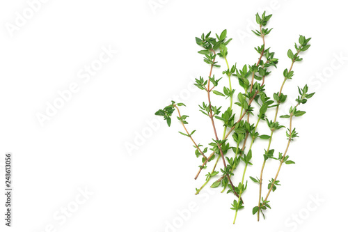 Pinturas sobre lienzo  green thyme bunch isolated on white background.