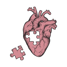 Human Heart With Missing Puzzl...