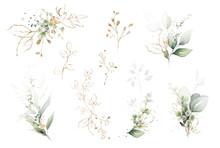 Watercolor Arrangements With ...