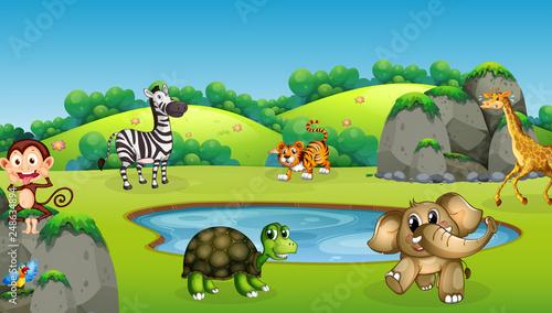 Happy wild animals in forest