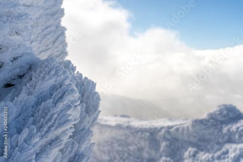 Fotografiet  Detail view of snow texture.