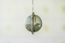 Suspended Metal Tea Infuser With Dried Leaves Of Green Tea And Mint On Clean Background