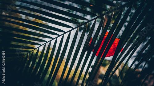 Photo  Leela palace bangalore