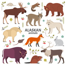 Alaskan Animals. Vector Illustration Of North American Mammals, Such As Moose, Lynx, Grizzly Bear, Polar White Wolf, Bison, Red Fox And Beaver. Isolated On White.