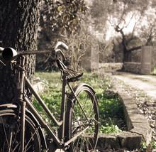 Old Rusty Vintage Bike