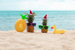 Family of funny attractive pineapples in stylish sunglasses on the sand against turquoise sea. Wearing christmas hats. Christmas and new year vacation concept on tropical beach. Family holiday. Bright