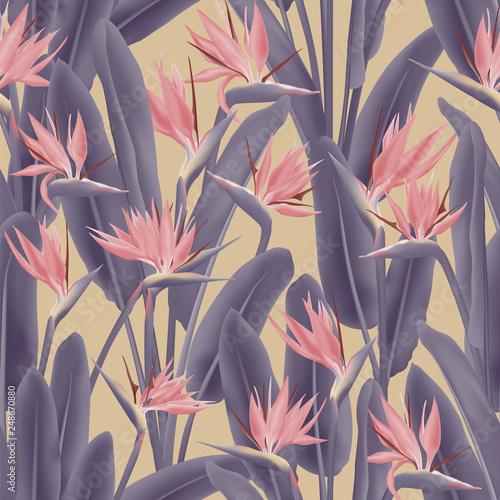 Photo  Bird of paradise tropical flower vector seamless pattern