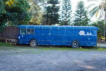 Abandoned Old Blue Bus