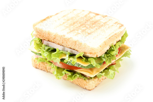 Tasty sandwich isolated on white background Canvas Print